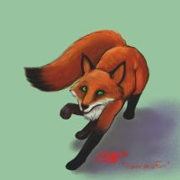 Fox by papermuse