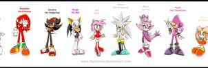Sonic characters hall of fame by Faintintai