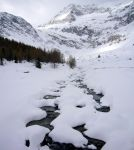 iced brook by dream-this-life-away