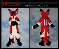 Nemesis the raverhound by Furitup