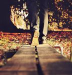 I Dare You To Follow by Peterix