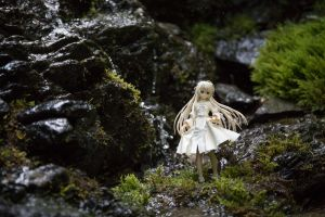 Expedition to the mountains 1: Sora by Adelram