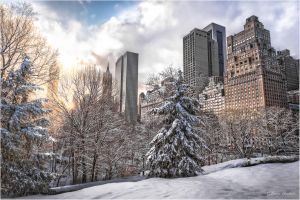 Central Park South by Tomoji-ized
