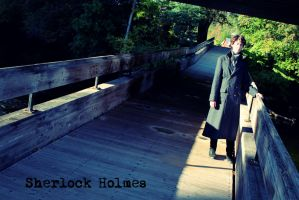 Sherlock: Consulting Detective by RhymeLawliet
