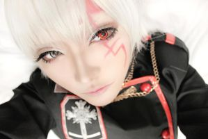 D. Gray Man by Hyetaya