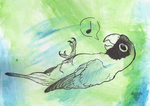 Birthday Lovebird by pheonix-conure
