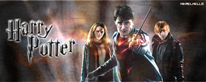 Harry Potter sign by mikaelmello