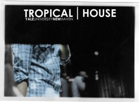 Tropical House by Vestiphobia