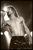 Iggy Pop by PixPimper