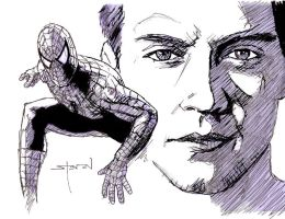 Peter Parker:Spider-Man by StevenWilcox