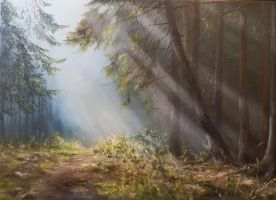 Morning forest by PiskunovSergey