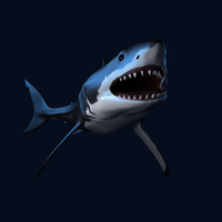 RR Great White Shark by SavannaW