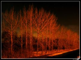 Red night by Obumbrata