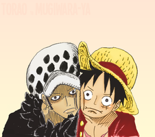 Luffy and Trafalgar. by Happinessxsorrow