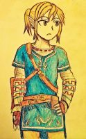 Link by NayruElric