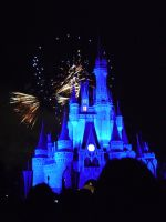Wishes, 2009 - 28 by CanisCamera