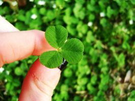 A Clover for Luck by Lonelyisonlyastate