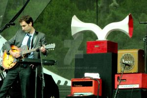 Andrew Bird and co by alucinante