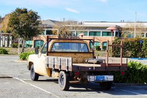 chameleon truck by GrinningPhD