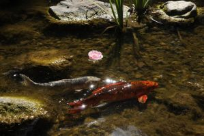 Two Koi and Flower by AndySerrano
