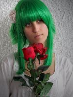 San Valentin day by Tina-Jack