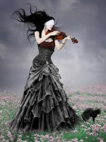 .. El Violin.. by Flore-stock