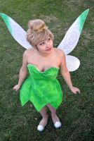 Tinkerbell : 16 by Lil-Kute-Dream