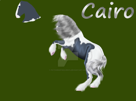 Cairo 6 yr ref--OLD by patchesofheaven74