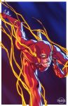 The Flash Commission by ParisAlleyne