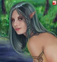 Elf girl by Layerx3