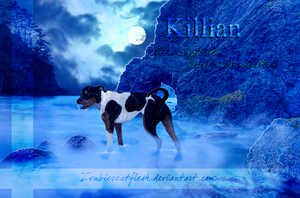 Killian by ZombiezEatFlesh
