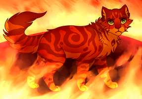 Firestar [REDO] by kitty-skeleton