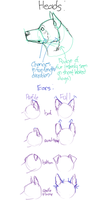 A Head and lots of Ears Guide by PSSFAS