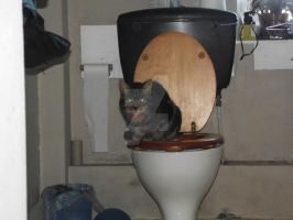 Smouse On The Toilet. by LumpySpacePrincess11