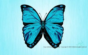My Butterfly by alfahd