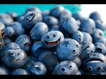 Blueberry Madness_Emotions by dragorien
