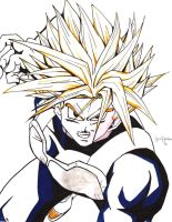 trunks sss by VincentRAY