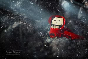 Danbo : Red Riding Hood by scharewl