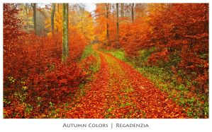 Autumn Colors by Regadenzia