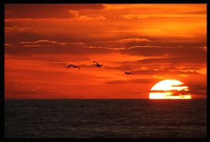 Sunrise in Nags Head, NC by pewter2k