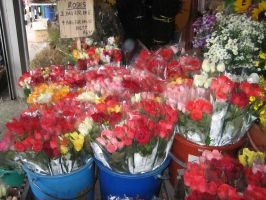 Roses for Sale 2 by EnchantedDove