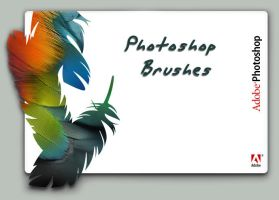 Photoshop Brushes by photoshopfans