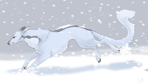 dashing through the snow by shelzie