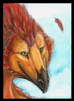 ACEO Naaer: Featherdance by LabradoriteWolf