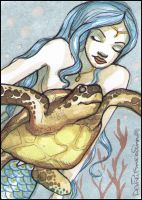 swim with a sea turtle by Fink-Art