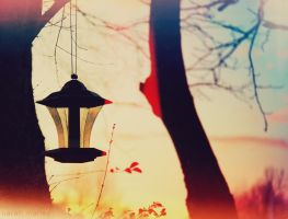 late.afternoon by sarah-marley