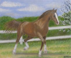 Horse - oil painting by Elkenar