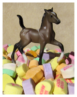 Breyer - Prince Of Hearts by The-Toy-Chest