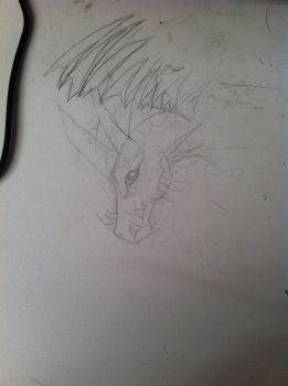 Image ? by Fireblaze625