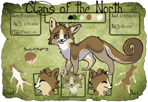 Tawnypaw COTN tryout updated by collie-rado